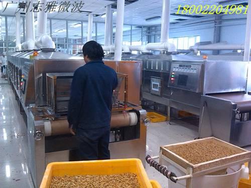 黄粉虫微波烘干设备