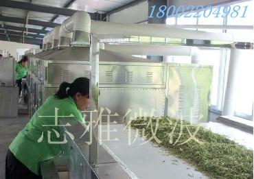 广州志雅ZY-80HM金银花杀青干燥设备