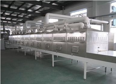 广州志雅ZY-60HM微波绿豆干燥设备