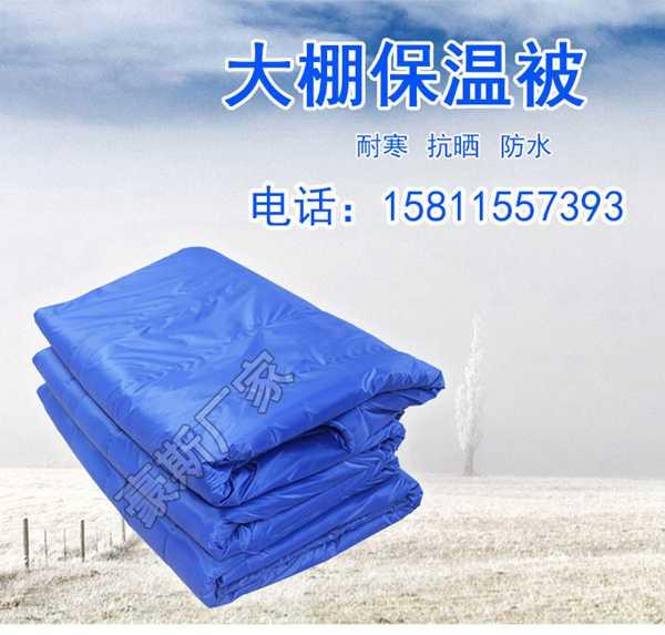 订做加厚温室大棚保温被防雨冬季保温棉被蔬菜温室防寒棉毛毡厂家
