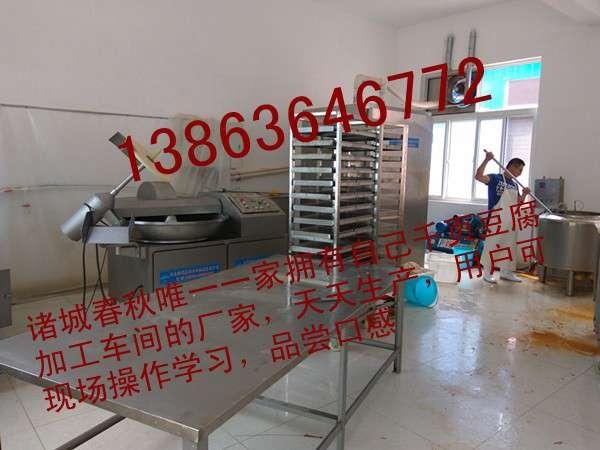 能够把千页豆腐做成香肠的机器13863646772春秋千页豆腐灌肠机,真空灌装机