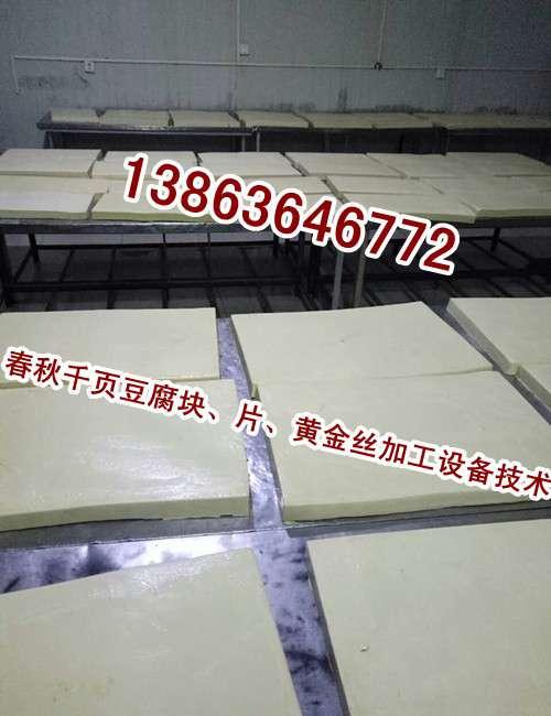 要想把千页豆腐做好,选好千页豆腐设备和千页豆腐技术工艺,二者缺一不可