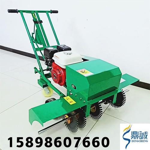 草坪切割工具厂家直销 人工种植草皮划线机 手扶汽油动力割草皮机