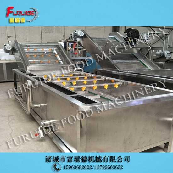 QYX-3000型辣椒茄子汽浴气泡式蔬菜清洗机