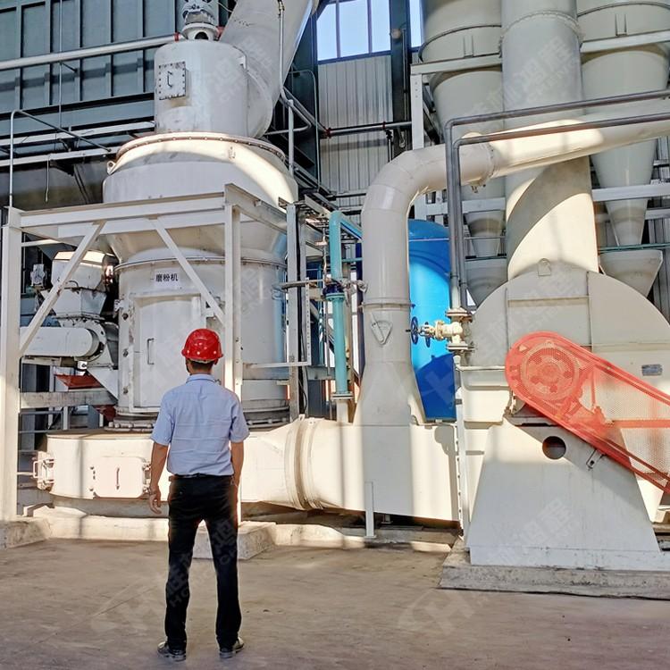 武钢矿渣粉磨粉机中型纵摆磨粉机