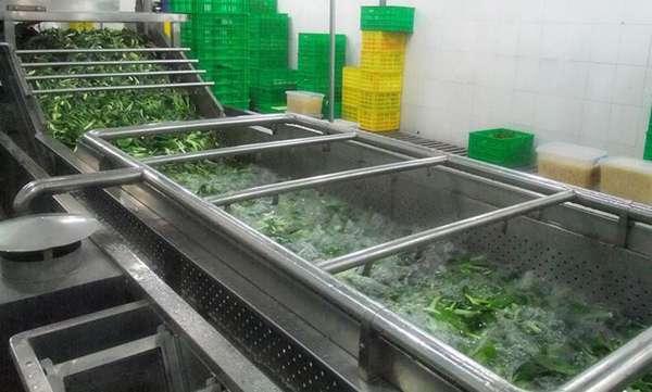 蔬菜气泡清洗机,专业定制