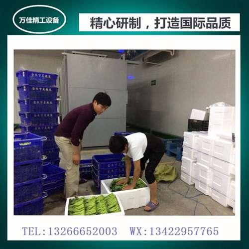 JV-4T供港蔬菜真空打冷机东莞定制_蔬菜真空打冷保鲜机报价