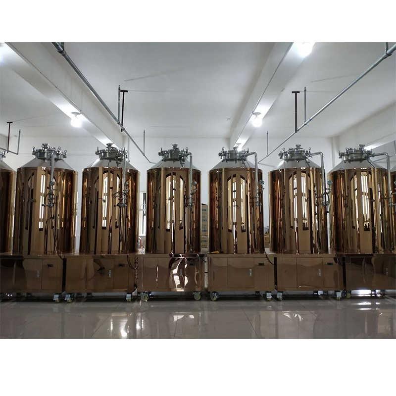 康之兴进口自酿啤酒机械设备