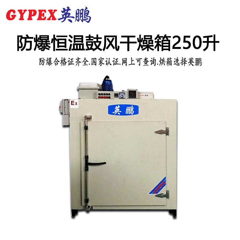 惠州防爆恒温鼓风干燥箱-250升