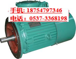 矿用防爆电机 DSB三相异步电动机