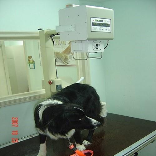 高频便携式X光机