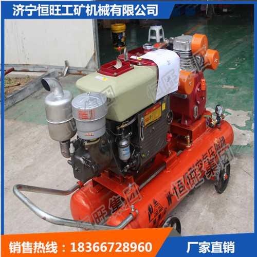 手持木桩机植桩机防汛打桩机便携式打桩机气动手提式打桩机