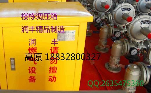 国标RX-0.4Q系列楼栋调压箱燃气调压柜燃气调压计量撬润丰