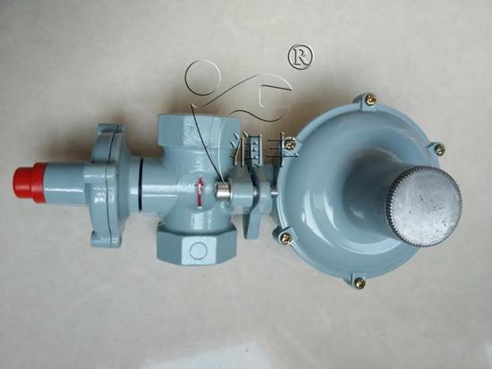 供应20方小型锅炉专用燃气减压阀内螺纹天然气调压器润丰专供