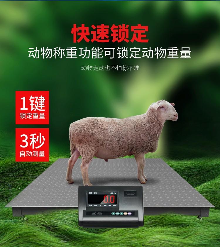 电子地磅秤畜牧秤牛秤猪3吨5吨电子秤仪表显示器带围栏电子地磅