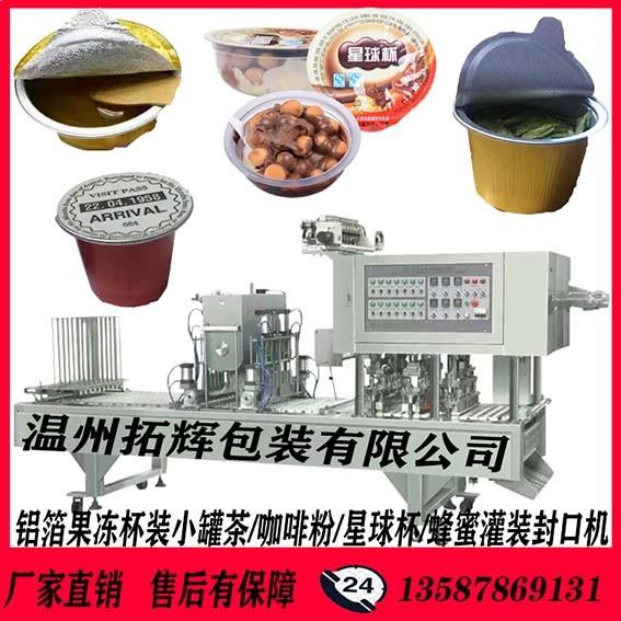 TH-6头全自动片膜包装封口机 咖啡粉灌装封口机