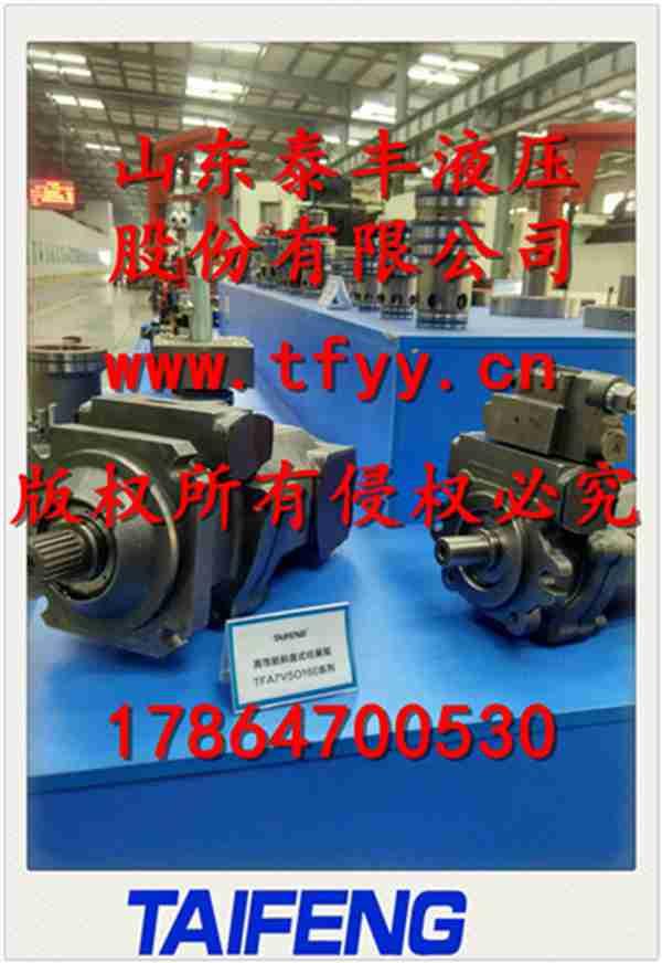 TFA7VSO160柱塞泵/核心轴承日本进口