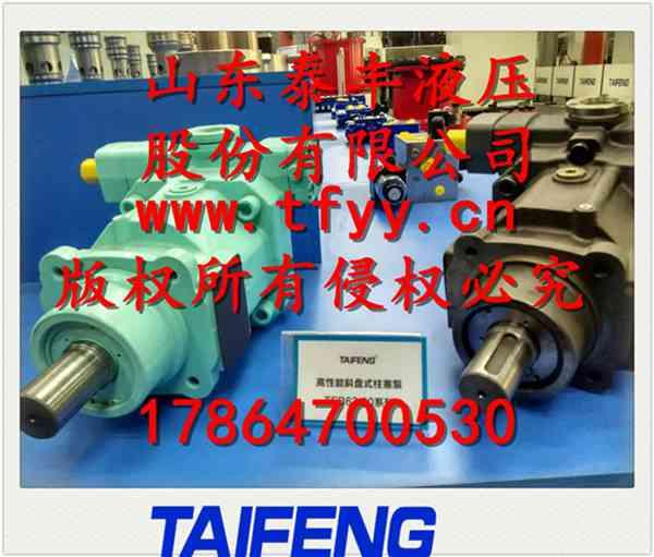 TFB1V/1X柱塞泵/CY泵系列/山东泰丰液压厂家专业制造