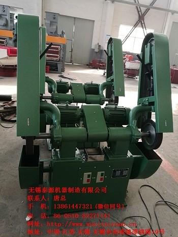 无锡泰源供应SSMO1双头砂带机品质一流效率高