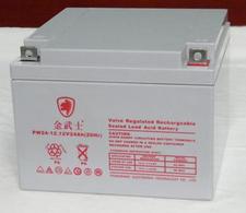 金武士蓄电池PH24-12/12V24AH金武士直流屏蓄电池