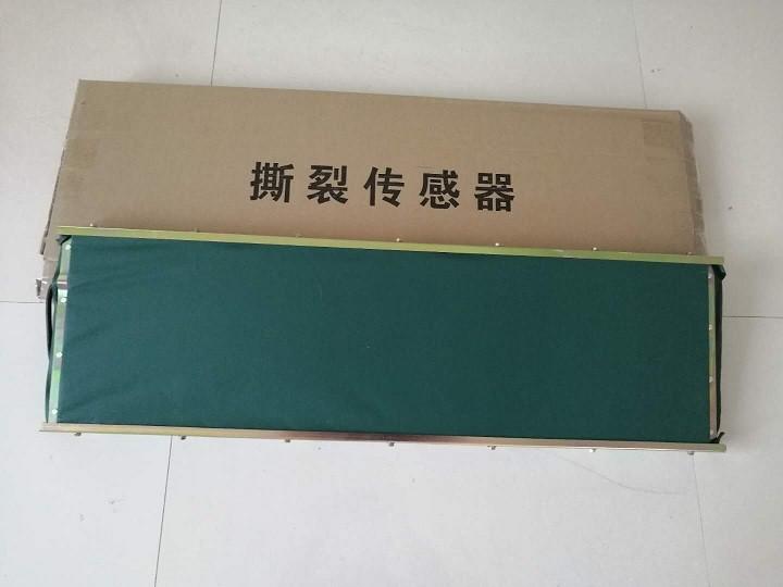 浙江玮肯GVD1200本质安全型撕裂传感器