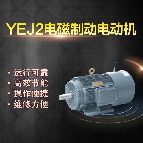 上海左力 YEJ制动电机 YEJ100L-6 (1.5kw)