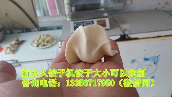 山东全自动小型饺子机sj-100