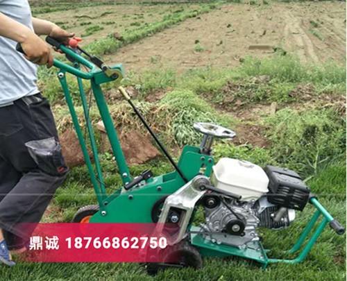 四川乐山本田汽油草坪起草机草坪切块机 自走式铲草皮机 草坪移植机多少钱