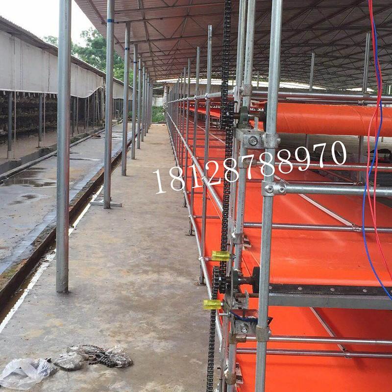 养鸡场自动给料机 养鸽子场自动给料机 清粪机 传输带养殖