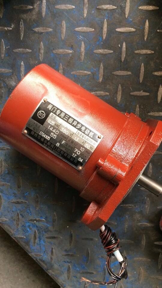国标执行器电动机YDF-WF-322-4  YBDF  YBDF2